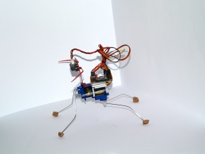 Insectbot